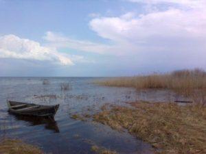 prodazha-zemelnyh-uchastkov-kolceevo-05