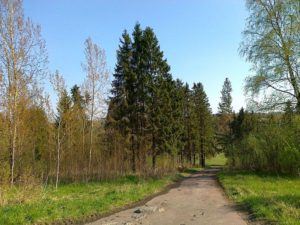 prodazha-zemelnyh-uchastkov-matveevskoe-05